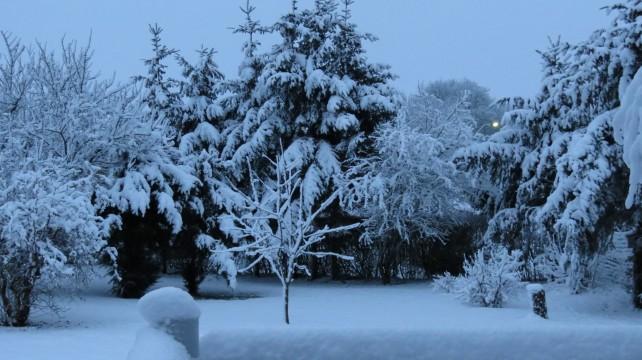 12 cm. sne ved Hammel