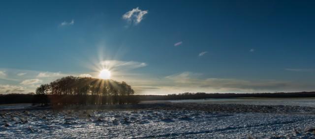 Frostklar dag i Dyrehaven