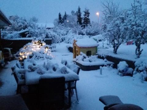 Sne i Hammel den 25/12 2014