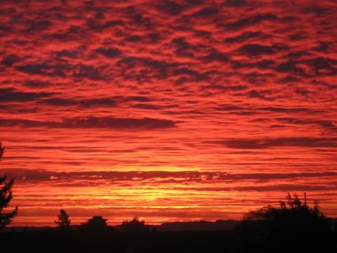 Flotte farver på morgen himlen  taget d. 4/1007 kl. 07.15